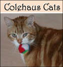 Colehaus Cat Seth