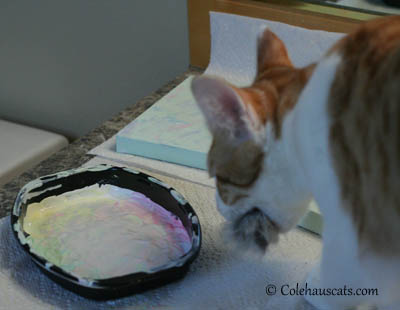 Quint, the painter, takes Mr. Mousie and leaves his studio - 2013 © Colehaus Cats