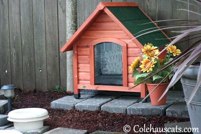 Geoffrey's House - 2013 © Colehaus Cats
