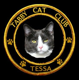 Tessa is proud to be Tabby Cat Club member #84