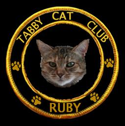 Member #88, Ruby is a proud member of the Tabby Cat Club.