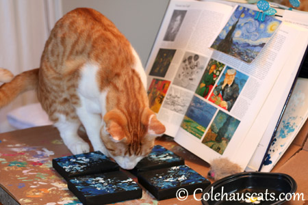 ...and it goes right there! - 2013 © Colehaus Cats