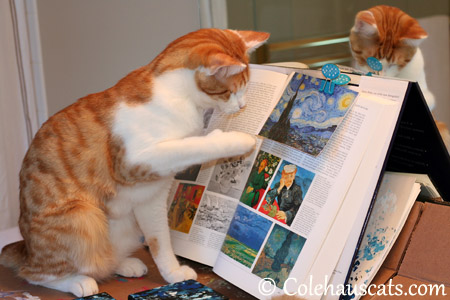 Quint paints his version of Van Gogh's Starry Night - 2013 © Colehaus Cats
