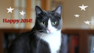 From all of us to all of  you, Happy 2014!  - 2014 © Colehaus Cats