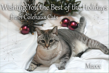 Maxx's Christmas Card  - 2014 © Colehaus Cats