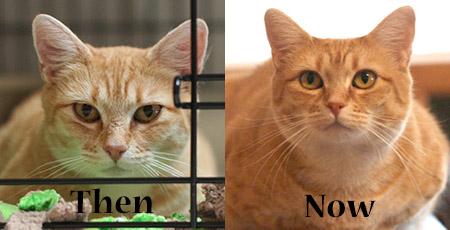 Zuzu, then and now