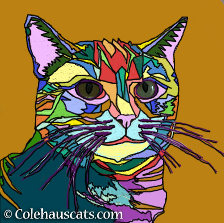 Ruby's pretty colors - 2015 © Colehauscats.com