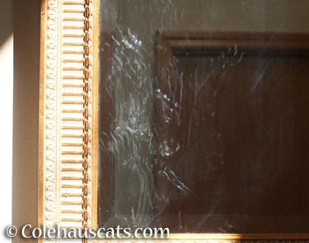 Quint's sign he wants to paint - 2015 © Colehauscats.com