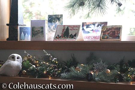 The Colehaus Holiday mantel - 2015 © Colehauscats.com