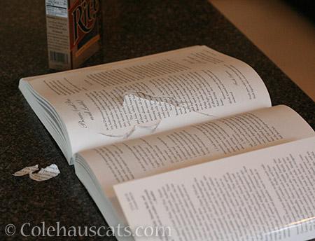 Dad's shredded cookbook - 2016 © Colehauscats.com