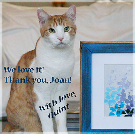 Thank you, Joan! - 2016 © Colehauscats.com