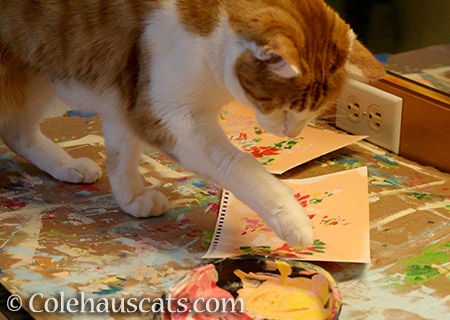 Quint's Two-Paw Paint Method - 2016 © Colehauscats.com