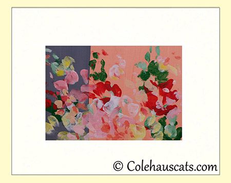 Quint's Duo-Color Summer Lilies - 2016 © Colehauscats.com