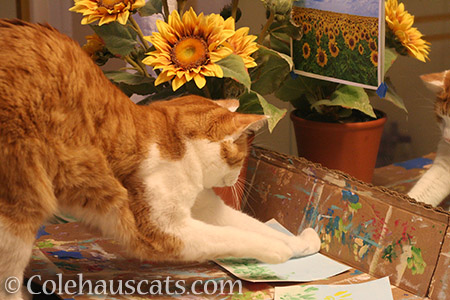 Quint painting Sunflowers - 2016 © Colehauscats.com
