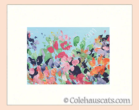 Full Spring by Quint - © Colehauscats.com