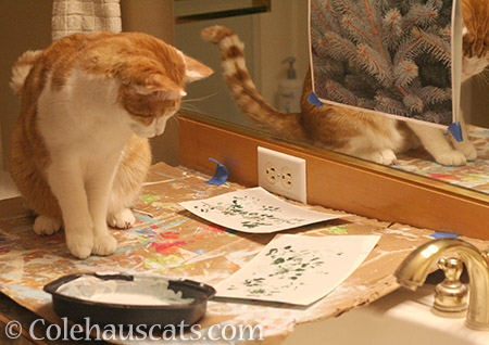 Quint ponders his next painting step - 2016 © Colehauscats.com