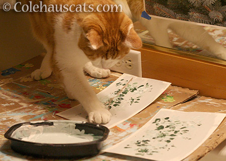 Quint painting his Snow and Cedars - 2016 © Colehauscats.com
