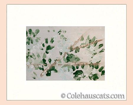 Quint's Snow and Cedars - 2016 © Colehauscats.com