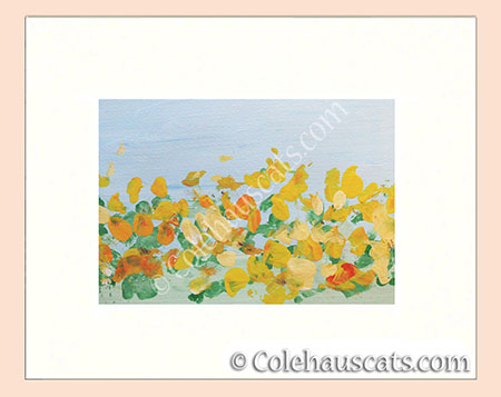 Sunflowers by Quint - © Colehauscats.com