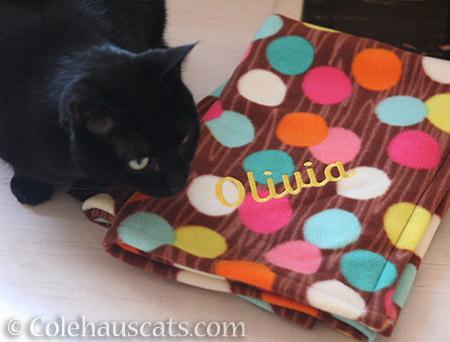 Olivia's blanket - © Colehauscats.com