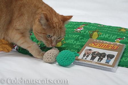 Festivus gifts for me? - © Colehauscats.com