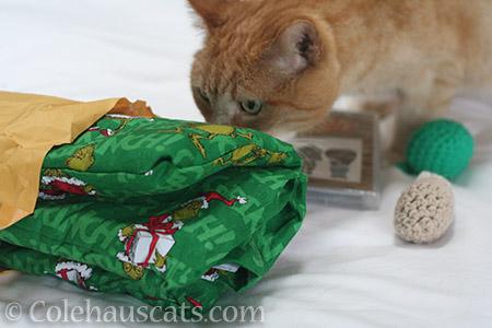 A wonderful Festivus package - © Colehauscats.com