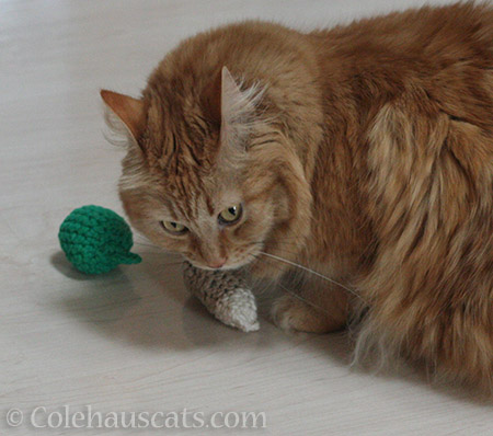 Pia's crocheted drumstick - © Colehauscats.com