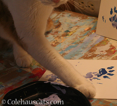 Quint painting spring - © Colehauscats.com