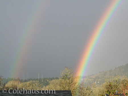 Double rainbow from a back window - © Colehaus.com