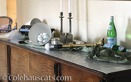 Tessa's idea of decorating - © Colehauscats.com