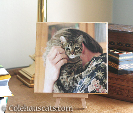 Viola and her Dad Photo Board - © Colehauscats.com